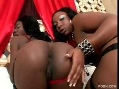 Ebony and hot chicks are having fun on the bed